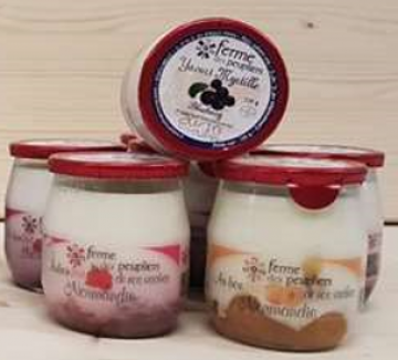 Yoghurt Peuplier Koe Fruit mix 6x125g
